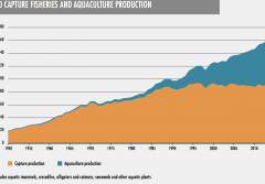 A graph of fisheries and aquaculture