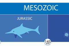 A timeline of the mesozoic era