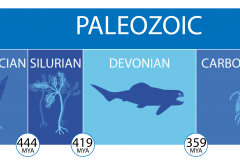 a timeline of the paleozoic era