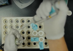 Screenshot from video showing hands of researcher wearing gloves and pipetting.