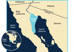 Map showing vaquita range in the Gulf of California with inset showing the Western Hemisphere and equator.