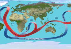 a ribbon on the globe represents oceanic currents