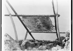 a wood frame dries walrus hide