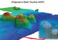 3-D map of Chapman's Reef. Produced in 2005 with multibeam sonar from an autonomous underwater vehicle (AUV).