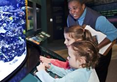 Two young visitors look into the coral reef aquarium at the Smithsonian's Sant Ocean Hall
