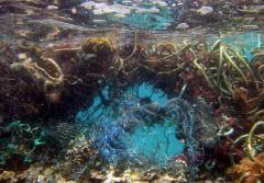 Lost nets become entangled on a coral reef in the NW Hawaiian Islands, doing damage for decades. Wave action on the net breaks pieces of coral off until the net breaks, when it is free to catch on new reefs and do more damage.