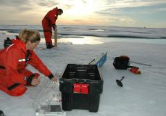 A marine biologist measures the temperature of an ice core.