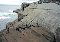 Mistaken Point New Foundland