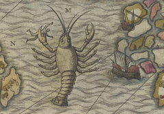A lobster like beat on an old map