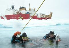 Ice divers descend through a hole in the ice.