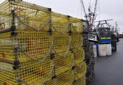 Yellow lobster traps sit on a dock ready to be loaded onto a boat.