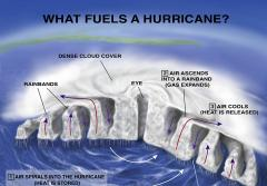 Illustration that shows a cross-section of a hurricane.