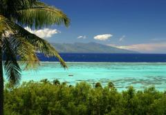 A view of the Pacific from Moorea, where scientists are working to catalog the life forms of the entire ecosystem.