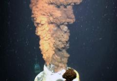 Dispersant in the Deep: Dispersants, soap-like chemicals that cause oil to mix with water more easily, have been used with success to remove oil after a spill on the ocean's surface. But Deepwater Horizon wasn't a surface spill; instead, oil spewed into th