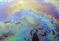 a thick multicolored oil sheen on the water inside a boat marina