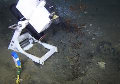 Positioned in front of a natural oil seep, this video camera is capturing images of the black oil bubbling up from beneath the sea floor. A light mounted to the frame helps see what is happening in the dark on the sea floor.