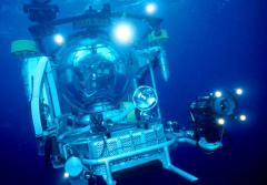 Ocean scientists inside the Johnson-Sea-Link submersible travel to deep-sea coral ecosystems up to 3,000 m (9,843 ft) below the ocean's surface.