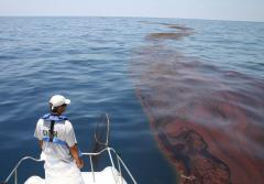 Mark Dodd, a wildlife biologist from Georgia's Department of Natural Resources, surveying oiled sargassum seaweed in the Gulf of Mexico after the Deepwater Horizon oil spill in 2010.