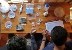 Students working on a marine genetics project at the Indonesian Biodiversity Research Center in 2011.